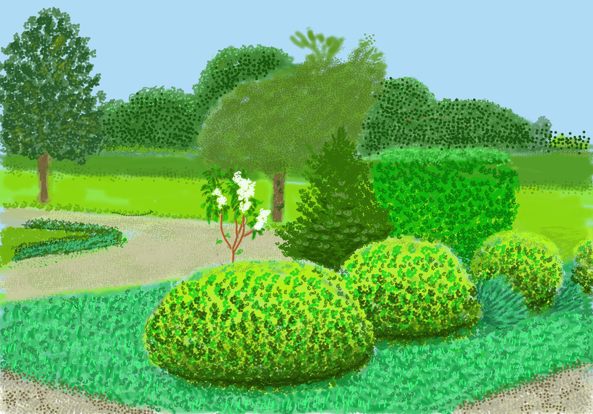garden and trees in spring time